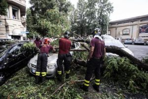 Vigili del fuoco a lavoro in via Monte Pertica dove per il maltempo un albero è caduto su di un auto in sosta. Roma 04 settembre 2015. ANSA/ANGELO CARCONI