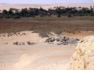 Turisti uccisi Egitto