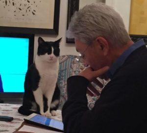 Bassolino e gatto