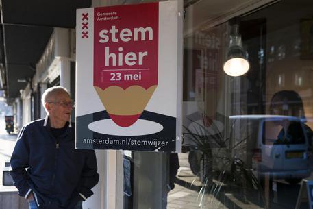 Netherlands European Elections